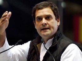 rahul gandhi   congress   political