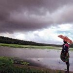 three-inches-in-surendranagars-chooda-rain-in-the-morning-in-several-areas-of-gujarat